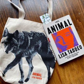 #LateNightReads call for something fearless and maybe a little sexy, so we're looking at @lisadtaddeo's novel coming out this Tuesday 📚 (And the first 10 preorders from us will receive this fierce tote and copies with signed bookplates 🤗)